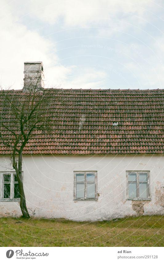 warten auf bessere Zeiten. Umwelt Himmel Wolken Winter Schönes Wetter Eis Frost Dürre Baum Gras Feld Dorf Menschenleer Haus Hütte Gebäude Bauernhof Mauer Wand