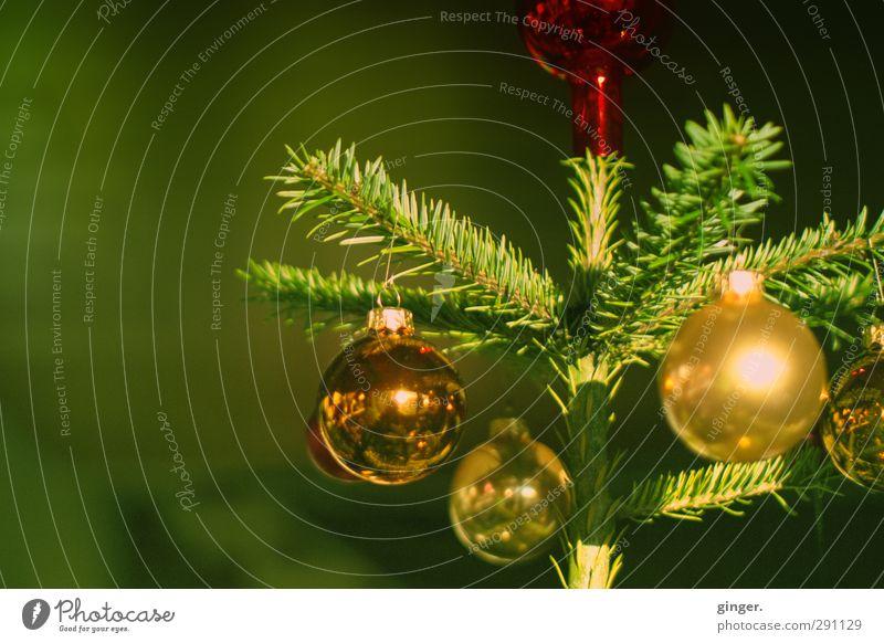 Er grünte so grün. Weihnachten & Advent schön gold glänzend mehrere Dekoration & Verzierung Spitze rund Weihnachtsbaum Kugel Tanne Christbaumkugel Tradition
