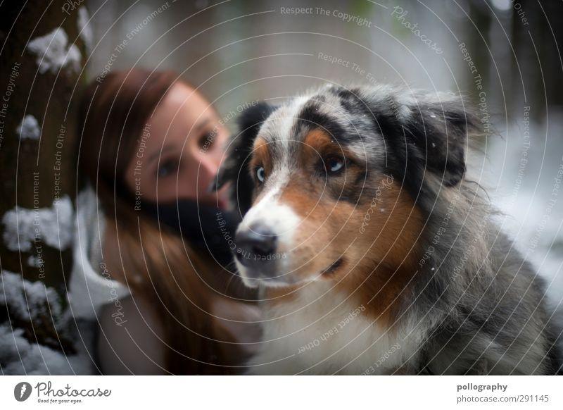 Der beste Freund des Menschen Hund Frau Natur Jugendliche Baum Tier ruhig Landschaft Wald Erwachsene Junge Frau Schnee Leben feminin Gefühle