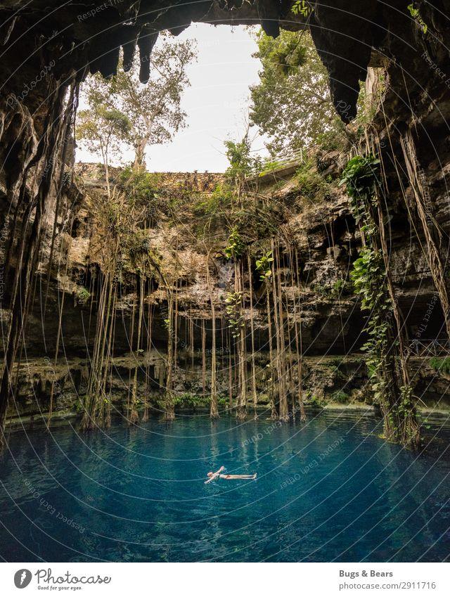 Cenote, Yucatan feminin Umwelt Natur Pflanze Wasser Sommer Grünpflanze Urwald Schlucht Teich See Oase genießen Abenteuer entdecken Erholung
