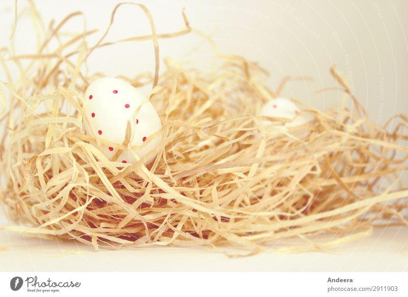 Ostereier mit Punkten im Stroh Ostern Dekoration & Verzierung blond hell natürlich rund trocken weiß ruhig Beginn Religion & Glaube Ei gepunktet Farbfoto