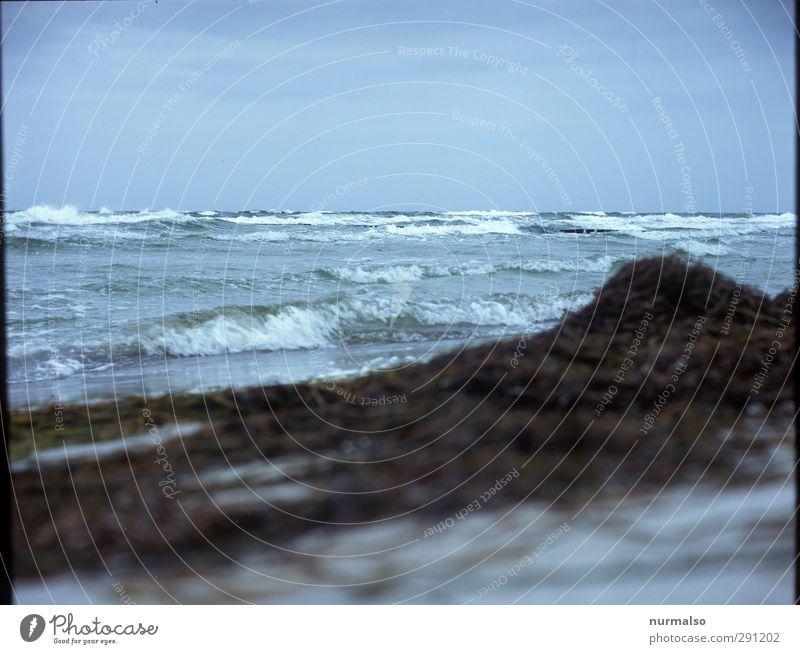 Baltic Sea Natur Ferien & Urlaub & Reisen Wasser Meer Strand Landschaft Erholung Ferne Herbst Freiheit Küste Schwimmen & Baden Kunst natürlich Wellen