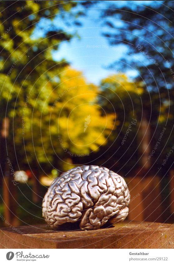 künstliche Intelligenz Gehirn u. Nerven Sockel Kunstwerk Dinge klug Wissenschaften gestaltbar Ausstellung Gesundheit silber Gehirnlandschaft gestellt Denken