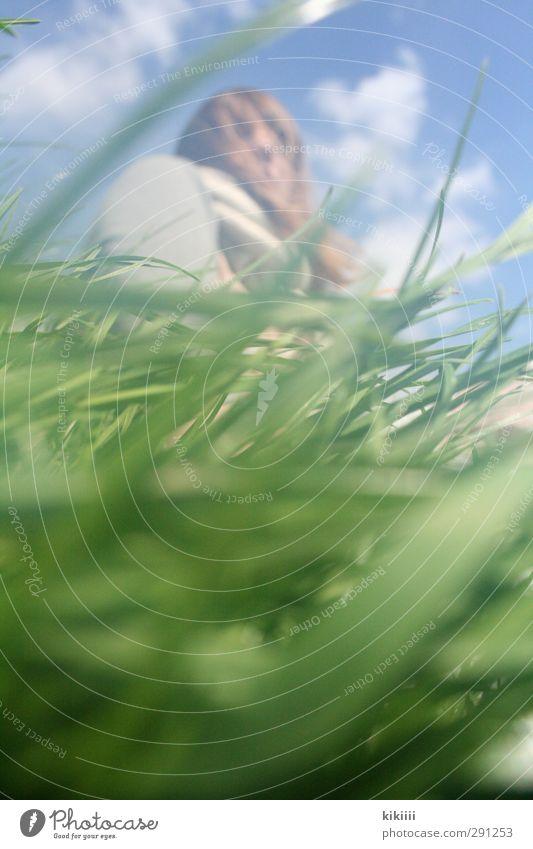 Froschperspektive Mädchen Gras grün Wiese Himmel unten Wind wehen Halm Blick Sommer Schwache Tiefenschärfe Unschärfe