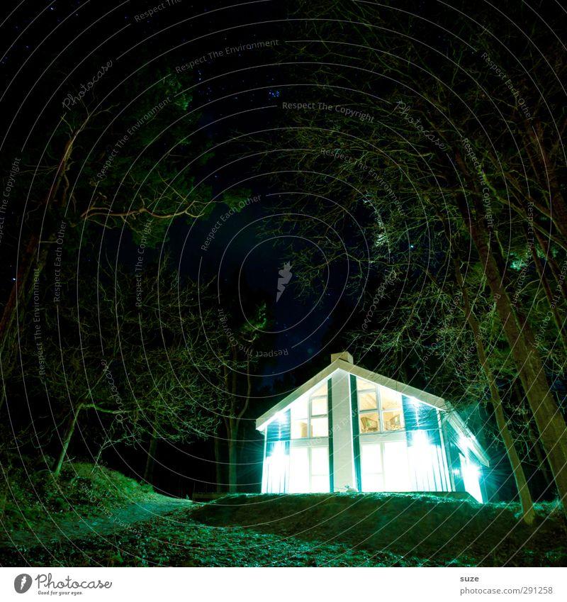 Die Besucher Ferien & Urlaub & Reisen Haus Umwelt Natur Landschaft Urelemente Nachthimmel Klima Baum Wald Einfamilienhaus Hütte leuchten außergewöhnlich dunkel