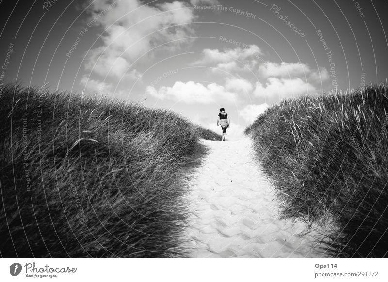 Long way home Mensch Frau Himmel Natur weiß Pflanze Sommer Meer Landschaft ruhig Wolken Tier Strand schwarz Erwachsene feminin