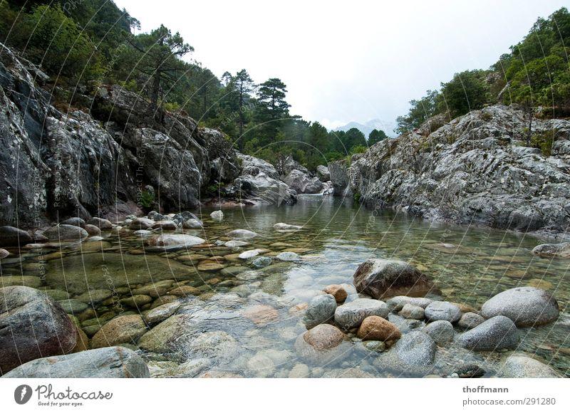 Korsika Natur Ferien & Urlaub & Reisen Pflanze grün Wasser Baum kalt Reisefotografie Berge u. Gebirge Schwimmen & Baden Stein Felsen Nebel Insel nass Fluss