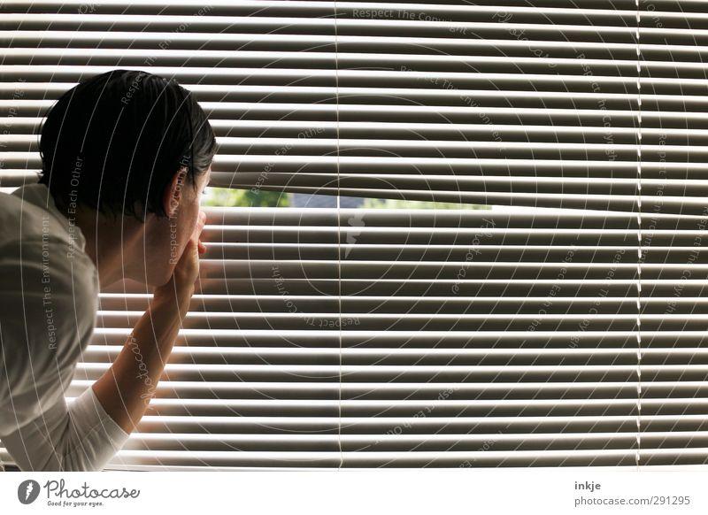 Das Leben der anderen. Lifestyle Häusliches Leben Wohnung Fenster Jalousie Fensterblick Mensch Frau Erwachsene Kopf 1 30-45 Jahre beobachten entdecken Blick