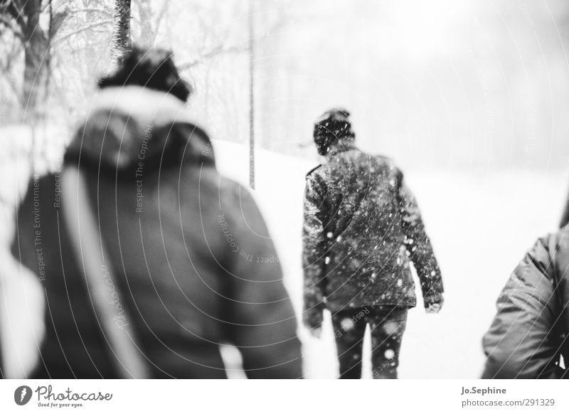 coldest Mensch Winter kalt Schneefall gehen Wetter laufen trist Spaziergang Mütze Mantel Schneesturm