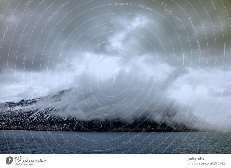Island Umwelt Natur Landschaft Urelemente Wasser Himmel Wolken Klima schlechtes Wetter Schnee Felsen Berge u. Gebirge Schneebedeckte Gipfel Wellen Küste Fjord