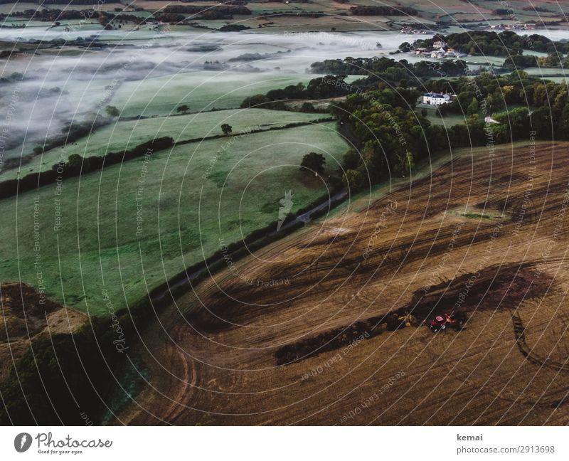 Der rote Traktor harmonisch Sinnesorgane Erholung ruhig Ferne Arbeit & Erwerbstätigkeit Landwirtschaft Forstwirtschaft Natur Landschaft Herbst Wetter Nebel