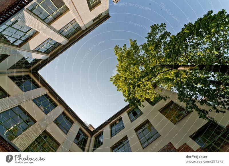 Das Fenster zum Hof 06 blau Himmel (Jenseits) Haus Architektur Berlin Gebäude Fassade Fröhlichkeit Freundlichkeit Bauwerk trendy Hauptstadt Hinterhof Traumhaus