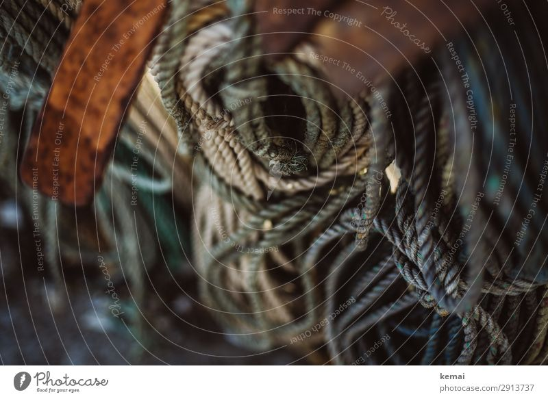 Seil braun grau authentisch rund viele lang hängen maritim