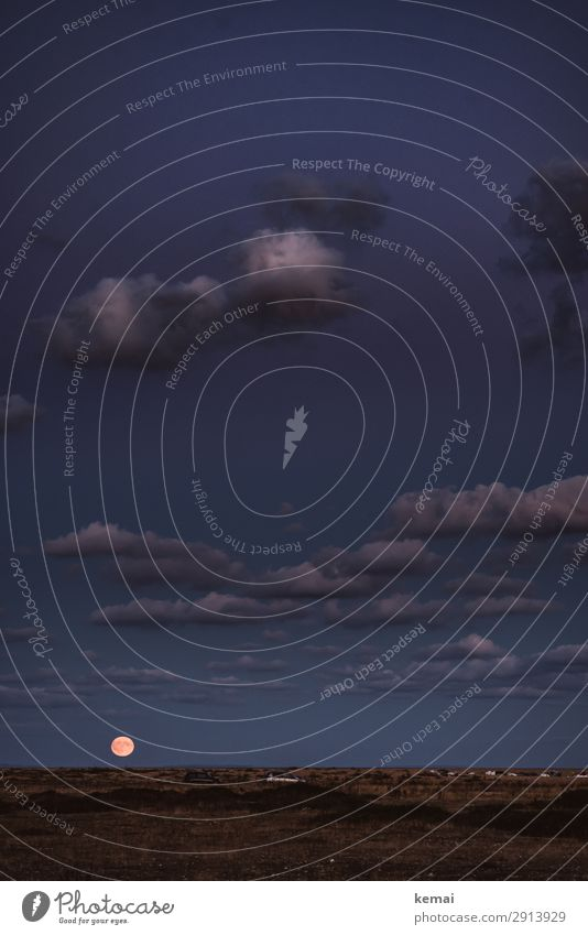 Mond überm Horizont, Wolken am Himmel Abend Nacht blaue Stunde Mondaufgang Menschenleer Mondschein Dämmerung Nachthimmel Natur Landschaft Licht