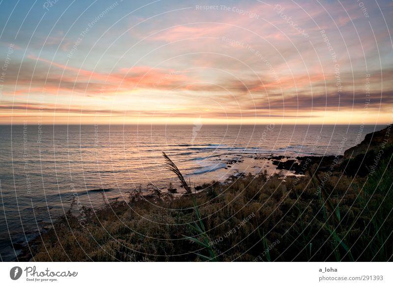 sao juliao nighttime Umwelt Natur Landschaft Pflanze Urelemente Wasser Himmel Wolken Horizont Sonnenaufgang Sonnenuntergang Sommer Schönes Wetter Gras Sträucher