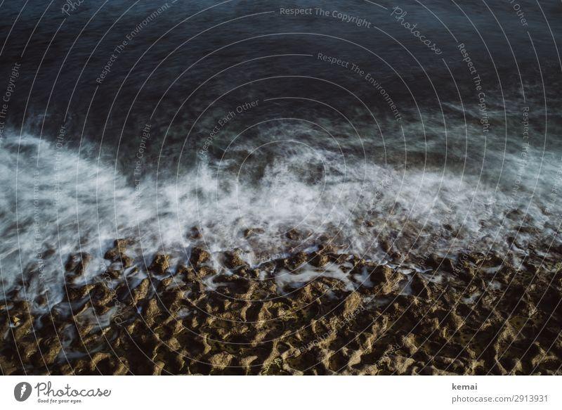 Brandung am Meer Wasser Langzeitbelichtung Wellen Felsen Stein Licht Kontrast wild Wildheit Abenteuer Menschenleer dunkel Natur blau Tag Küste Strand Urelemente
