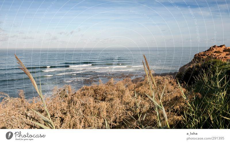 sao juliao daytime Umwelt Natur Landschaft Pflanze Urelemente Wasser Himmel Wolken Horizont Sommer Schönes Wetter Gras Sträucher Felsen Wellen Küste Strand Meer
