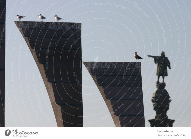 Columbus II Statue obskur Taube Barcelona Andalusien Sevilla Kolumbus Denkmal