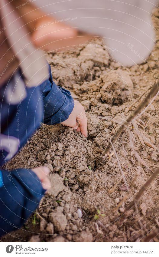Junge (Kind) steckt kleine Bohnen Samen Ferien & Urlaub & Reisen Natur Jugendliche Sommer Hand Leben Umwelt Frühling Garten Freizeit & Hobby Erde Kindheit