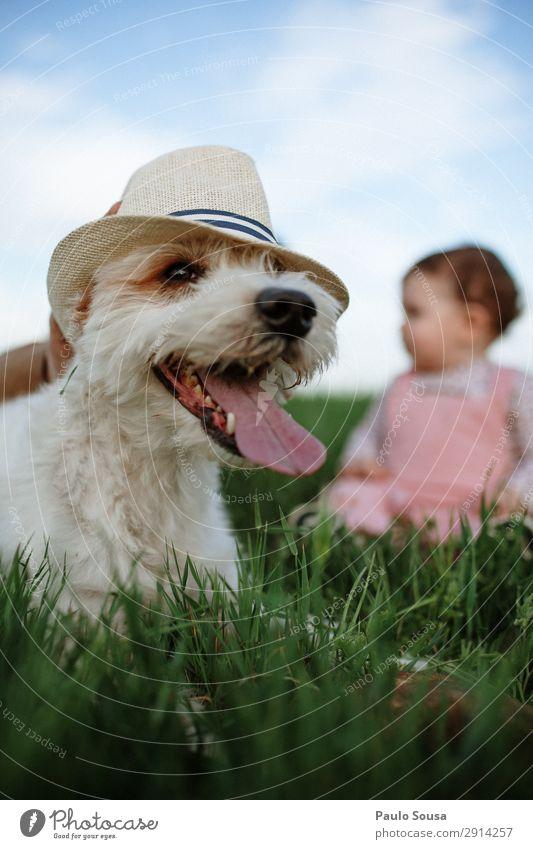 Ferien & Urlaub & Reisen Natur Hund Farbe Tier Freude Lifestyle Umwelt Liebe Frühling natürlich lustig Glück Tourismus Zusammensein wandern