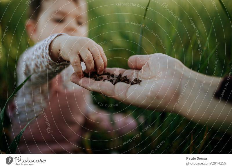 Kind berührt Erde in der Hand der Mutter Lifestyle Mensch Baby Mädchen Erwachsene 1 1-3 Jahre Kleinkind Umwelt Natur Sommer berühren entdecken genießen liegen