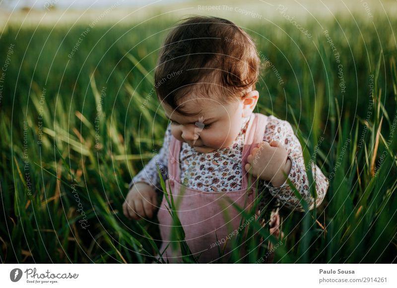 Baby in der Natur Lifestyle Ferien & Urlaub & Reisen Mensch Kind Kleinkind Mädchen 1 1-3 Jahre Umwelt Sommer Feld Bewegung entdecken Fröhlichkeit frisch Glück