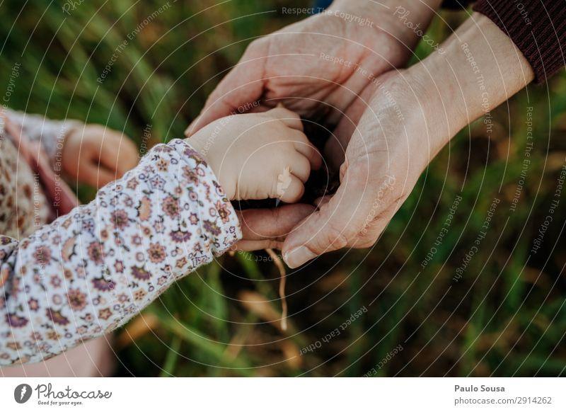 Tochter- und Mutterhände Lifestyle Kindererziehung Mensch Baby Kleinkind Mädchen Erwachsene Hand 1-3 Jahre 18-30 Jahre Jugendliche Umwelt Natur Feld berühren