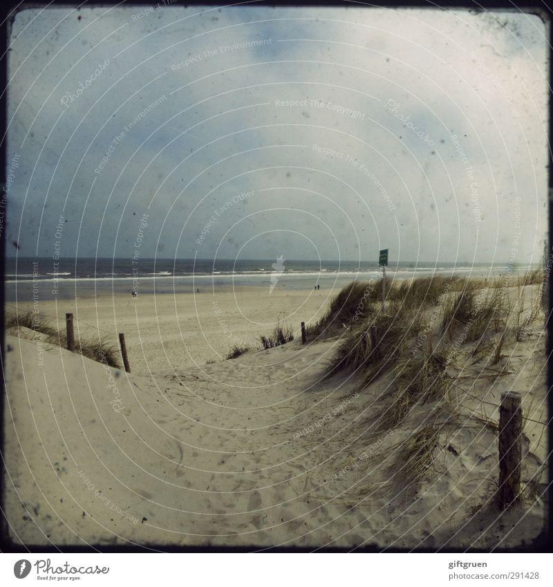 strandwärts Umwelt Natur Landschaft Urelemente Sand Wasser Himmel Wolken Wellen Küste Strand Ostsee Meer Schwimmen & Baden Stranddüne Sandstrand Pfosten