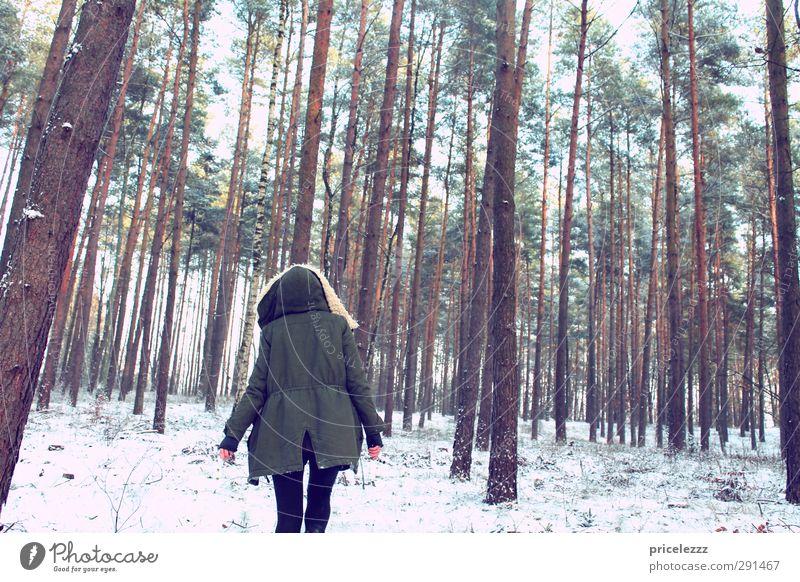 Ich ging im Walde... Spaziergang feminin Junge Frau Jugendliche Körper Rücken 1 Mensch Natur Winter Eis Frost Schnee Parka Kapuze Fell gehen Neugier Einsamkeit