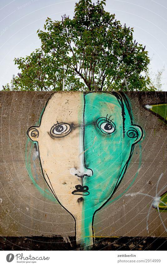 Sommerfrisur Baum Baumkrone Natur Ast Zweig Frühling Menschenleer Textfreiraum Gesicht Graffiti Grafik u. Illustration Gemälde Zeichnung Wandmalereien Kunst