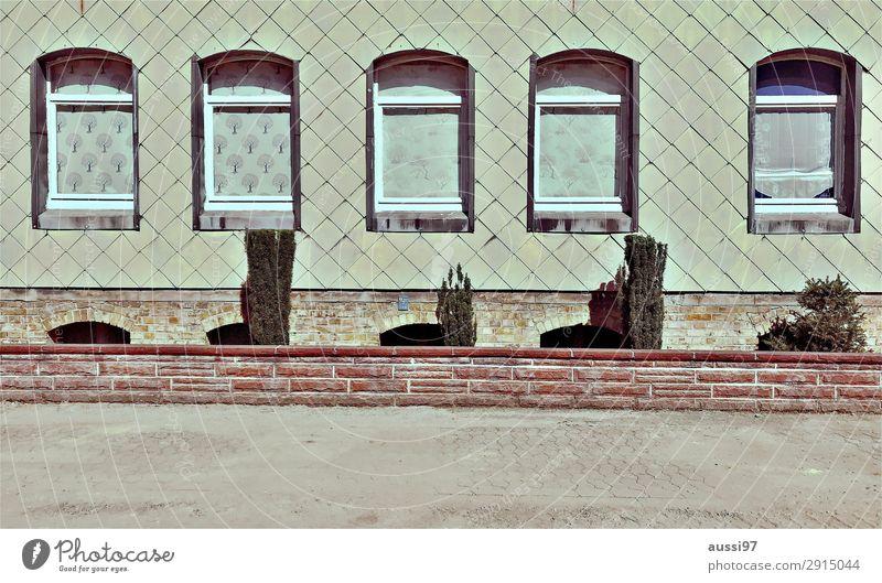 5•120=600 Fenster Fassade Schiefer Wohnung Vorgarten Idylle Menschenleer kalt austauschbar Vorstadt Gedeckte Farben Parterre Erdgeschoss