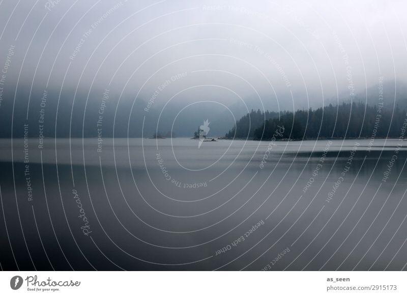 Still ruht der See ... Umwelt Natur Landschaft Pflanze Wasser Frühling Herbst Winter Wetter schlechtes Wetter Nebel Seeufer dunkel natürlich blau grau schwarz