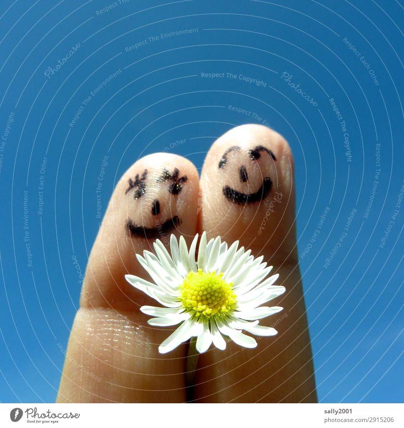 Frühlingsgefühle... Gesicht Finger 2 Mensch Wolkenloser Himmel Blume Gänseblümchen berühren Blühend Lächeln Liebe Freundlichkeit Fröhlichkeit Zusammensein Glück