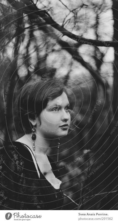 im dunkeln. Mensch Jugendliche Baum Einsamkeit Gesicht Erwachsene dunkel Herbst feminin Haare & Frisuren Traurigkeit 18-30 Jahre träumen beobachten Ast Trauer