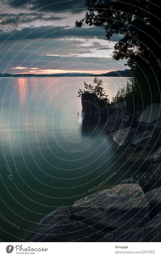 silence Umwelt Natur Landschaft Pflanze Urelemente Wasser Himmel Wolken Gewitterwolken Horizont Sonnenaufgang Sonnenuntergang Sonnenlicht Sommer Schönes Wetter