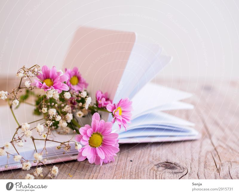Frühlingsblumen auf einem Buch Lifestyle Muttertag Geburtstag Blume Blüte Tagebuch Blumenstrauß Duft liegen frisch schön rosa Frühlingsgefühle Kreativität
