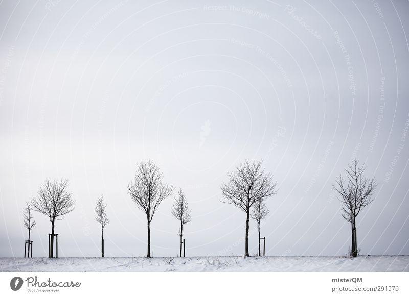 Grau in Grau. Baum Winter Umwelt grau ästhetisch Allee trüb karg Landstraße Winterstimmung Wintertag Wintermorgen