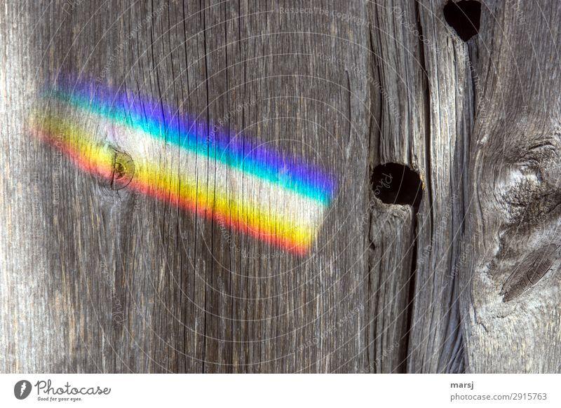 Regenbogen an alter Holzwand Maserung Astloch regenbogenfarben leuchten authentisch Kitsch mehrfarbig seltsam Holzbrett Patina abgelebt vergangen Farbfoto