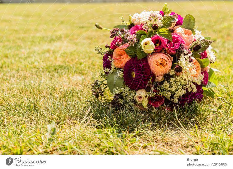 Brautstrauß am Tag der Hochzeit elegant Design schön Dekoration & Verzierung Feste & Feiern Valentinstag Muttertag Paar Partner Natur Pflanze Blume Rose Blüte