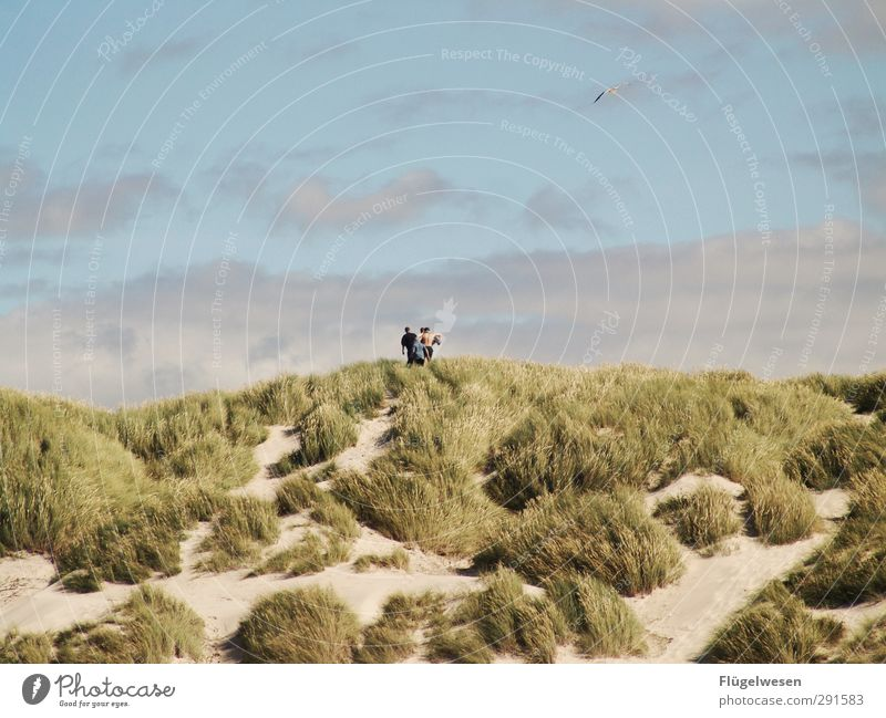 weit weit weg Lifestyle Freizeit & Hobby Menschengruppe Menschenmenge Wellen Küste Seeufer Flussufer Strand Nordsee Ostsee Meer wandern Düne Stranddüne