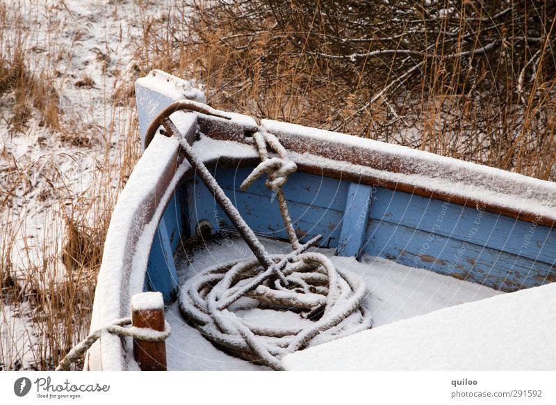 Winterschlaf blau weiß Einsamkeit ruhig Umwelt kalt Schnee Gefühle braun Eis Wasserfahrzeug Freizeit & Hobby warten schlafen Frost