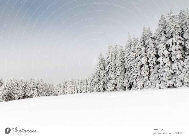 Brend Ferien & Urlaub & Reisen Tourismus Ausflug Winterurlaub Umwelt Natur Landschaft Himmel Klima Schönes Wetter Eis Frost Schnee Baum Baumreihe Feld Wald