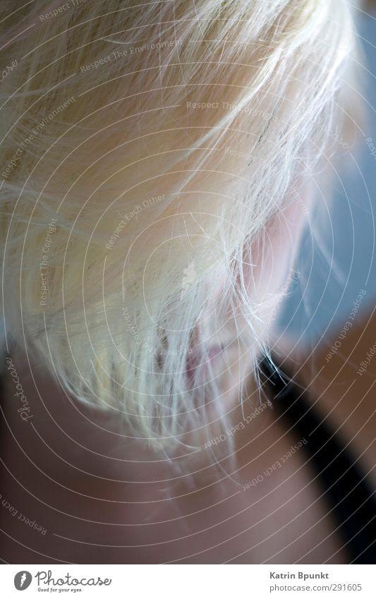 Heavy Rope Mensch androgyn Haare & Frisuren 1 18-30 Jahre Jugendliche Erwachsene blond Erotik schön geheimnisvoll Schutz Gedeckte Farben Innenaufnahme