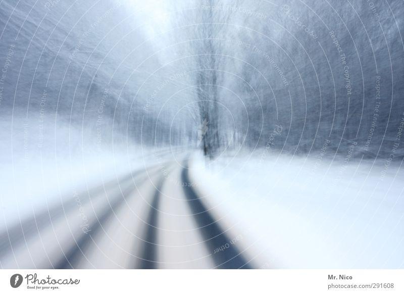 auf wintersehen I Umwelt Natur Klima Eis Frost Schnee Verkehrswege Autofahren Straße Wege & Pfade Alkoholsucht Geschwindigkeit kalt Wald Winter Spuren