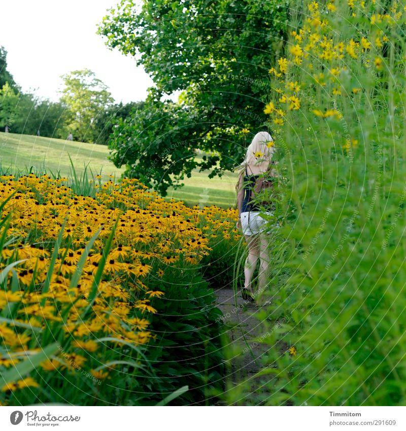 Ein guter Weg. Sommer Mensch feminin Junge Frau Jugendliche 1 Pflanze Baum Blume Sträucher Blüte Garten Park gehen frisch natürlich gelb grün Gefühle
