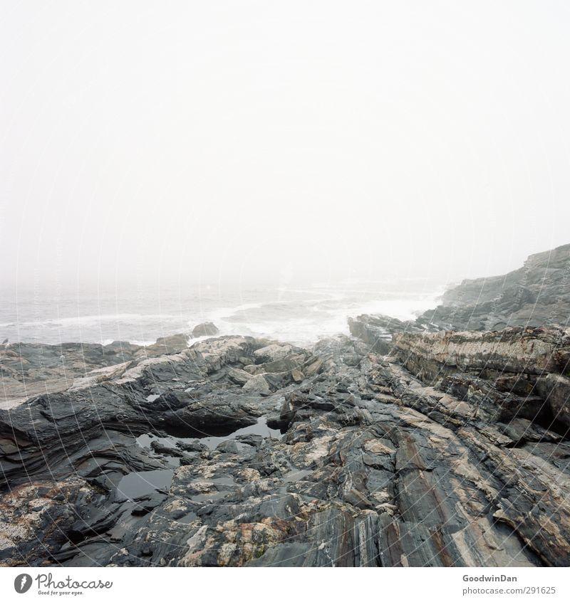 Pur. Umwelt Natur Landschaft Urelemente Erde Wasser Himmel Sommer Klima Wetter Nebel Felsen Wellen Küste Riff Meer atmen außergewöhnlich bedrohlich Duft