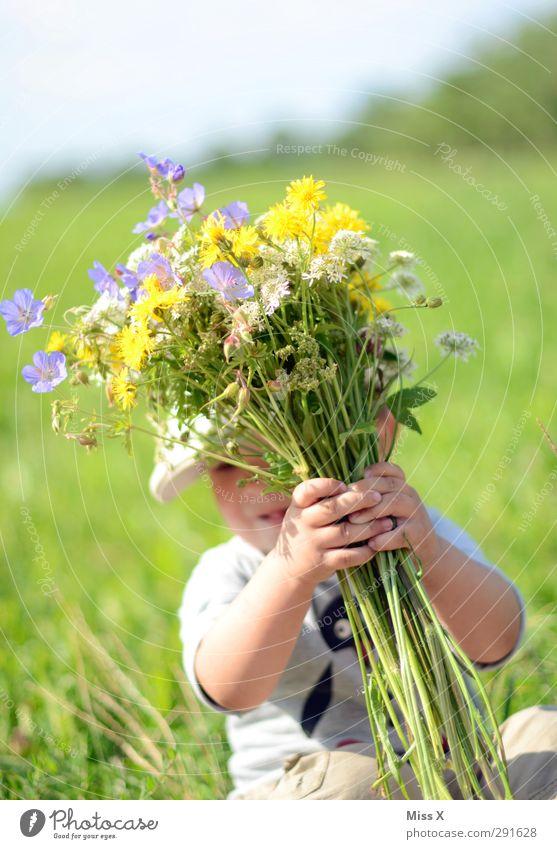Photocase braucht mehr Sommer Mensch Baby Kleinkind Kindheit 1 1-3 Jahre Frühling Blume Gras Blatt Blüte Garten Wiese Blühend Lächeln lachen Duft klein niedlich