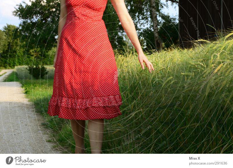 Sommertag Mensch Junge Frau Jugendliche 1 18-30 Jahre Erwachsene Feld Kleid schön rot Weizen Weizenfeld Farbfoto Außenaufnahme Abend Dämmerung Sonnenlicht
