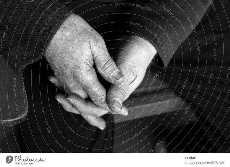 Seniorenhände in Schwarz-Weiß neben Stuhllehne Mensch maskulin Mann Erwachsene Männlicher Senior Hand Finger Beine 1 45-60 Jahre 60 und älter Hose Pullover