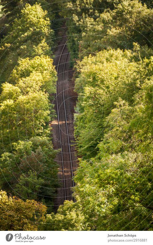 Bahnschienen im Wald Umwelt Natur Landschaft Verkehr Verkehrsmittel Verkehrswege Öffentlicher Personennahverkehr Güterverkehr & Logistik Bahnfahren